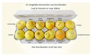 Poster borstkanker NL1